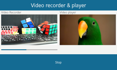 Video recorder and player