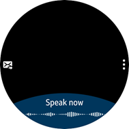 Voice user input